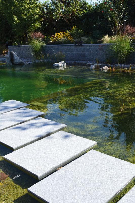 piscine-granit-bravo
