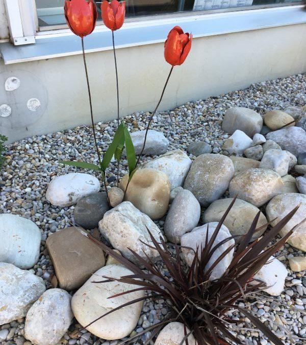 Tulipes acier